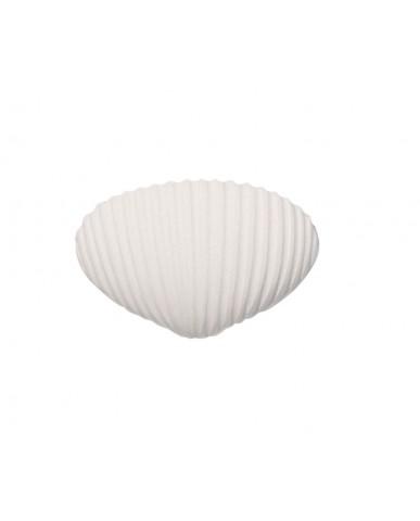 日本Soil 乾燥塊(海貝細紋)-白色